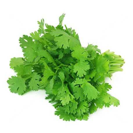 coriander leaves dried 250 gms